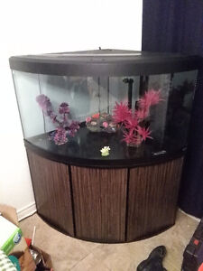 Aquarium 80 gallon