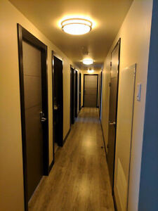 181 Lester Summer Sublet (May 1st - > August 25th)
