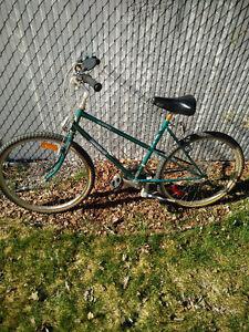 Mountain bike needs repair