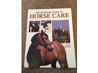 The essential guide to horse care
