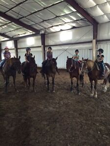 Riding lessons , birthdays, camps