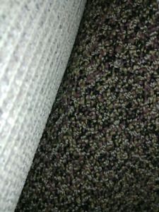 12'x18' carpet and under cushion.
