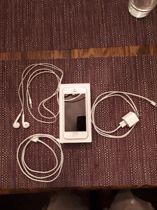 Silver Iphone 5s 16gb