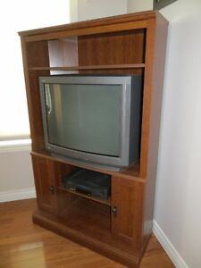 Sony TV and Entertainment Cabinet
