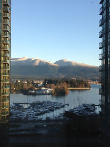 Furnished 1 bedroom in downtown Vancouver, Water View &Parking