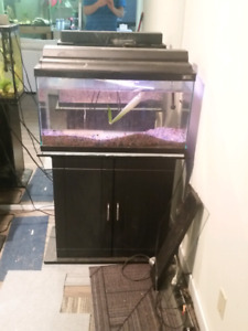 35 gallon  fish tank with everything included also  i