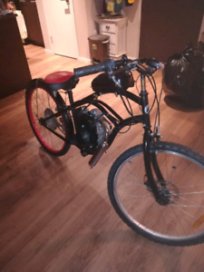 Custom Motorized Bicycle