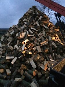Ash firewood ready to burn and free delivery