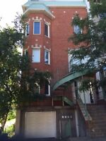 Sunny and quiet downtown location-furnished