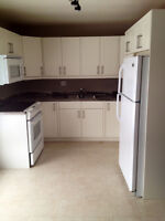 Brand new kitchen, tons of renos, 3 beds New Sudbury