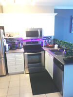 BEAUTIFUL LUXURIOUS ONE BEDROOM UNIT FOR RENT 353 COMMISSIONERS