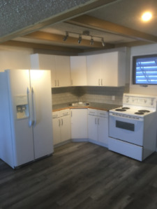 Fully Renovated Basement Suite - UTILITIES INCL - Available Now