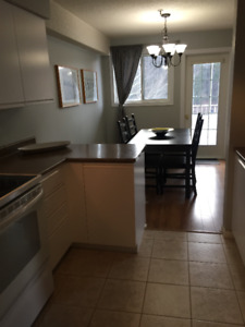 Furnished 2 Bedroom Condo for Rent - Just bring your suitcase