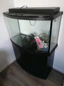Aquarium 45 gallons