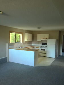 large bright level entry 2 BR basement suite in central Nanaimo