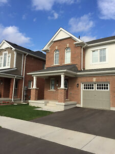 One year new Semi-detached for Rent in Milton, Hawthorne Village