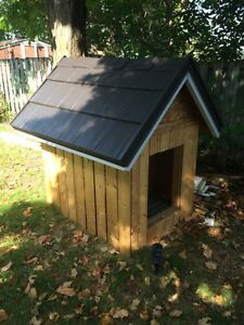 Custom dog houses