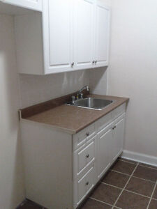 Nice modern 1 bedroom apartment available near downtown