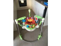 Fished Price Rainforest Jumperoo