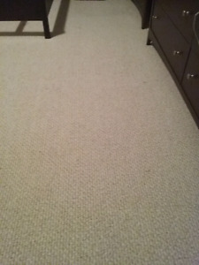 Used carpet+sub carpet+ grippers 830 Sq ft. Great condition