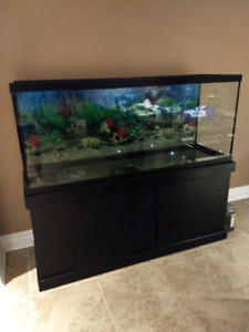 120 gallon Fish Tank with Stand