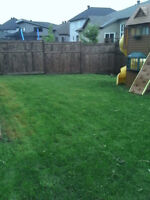 Hartens Lawn and Landscape
