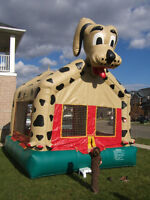BOUNCY CASTLE RENTALS FOR PRIVATE BACKYARD PARTY BRAMPTON SOUTHT