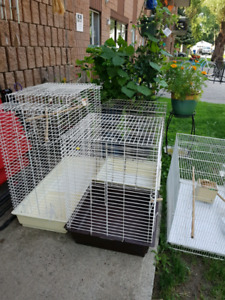 5 cages  only $250