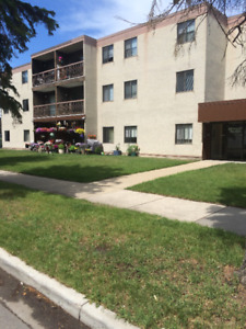 LARGE  2 BEDROOM  ADULT APARTMENT-