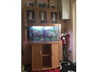 Aquarium Juwel vision 180 aquarium £125