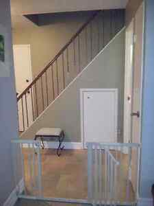 Baby Gate xtra wide