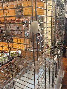Large Vision cage for sale Kitchener / Waterloo Kitchener Area image 6