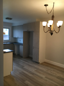 5 1/2 apartment for rent - FULLY RENOVATED