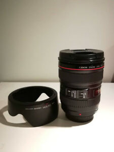 Canon Lens: 24-105mm F4 L IS USM