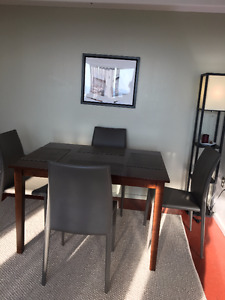 Martin Dining Chair set and hardwood table