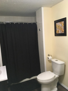 Bedroom Available in 1,700 Sqft Home- DOWNTOWN