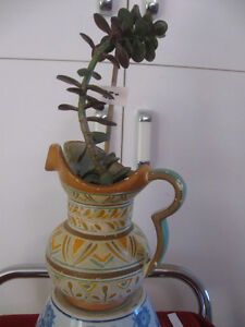 JADE TREE HOUSE PLANT in OLD RUSTIC AZETEC POTTERY JUG