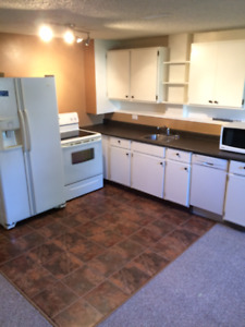 Bright and Cozy Suite in Lakeview - All Utilities Included!