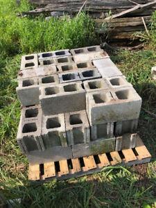 """8"""" Standard Concrete Construction Blocks"""
