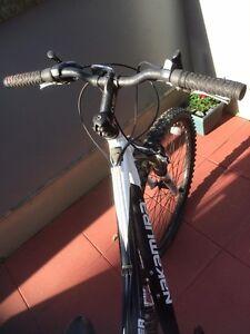 NAKAMURA Cytec Bike