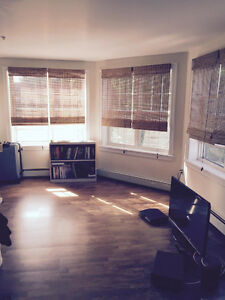 Great Bachelor Apartment Close to Downtown (50% off 1st month)