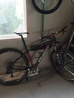 """2009 17.5"""" Full Carbon Specialized Mountain Bike"""