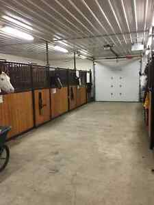 Indoor/Outdoor Horse Boarding Available: Within 2 miles S.Park
