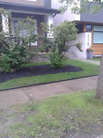 Right Way Sod & Lawn care
