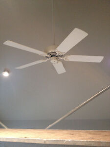 Large, Good Quality Ceiling Fan!