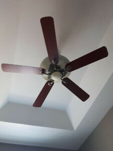Hampton Bay- Ceiling fan