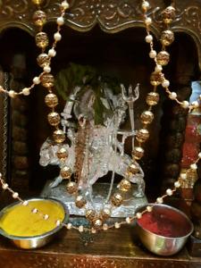 Best astrologer in brampton