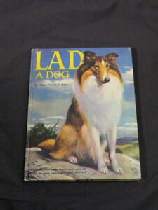 LAD A DOG (beautiful Collie story for the little ones)