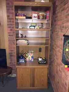 Book case / shelves