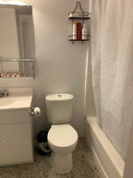 Very bright and big room for rent FEMALE ONLY
